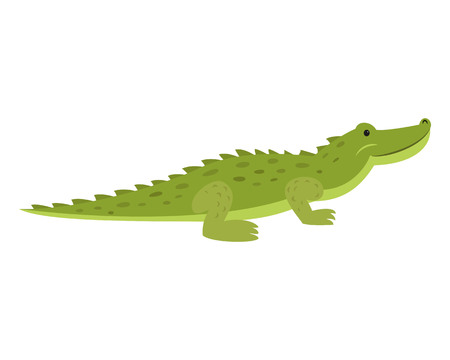 Cute crocodile on white background. Vector illustration.