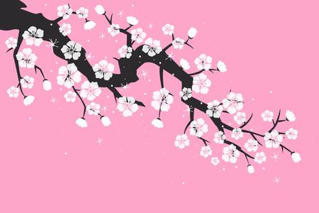 Cherry blossom, sakura flowers on pink background. Vector Illustration. Illustration