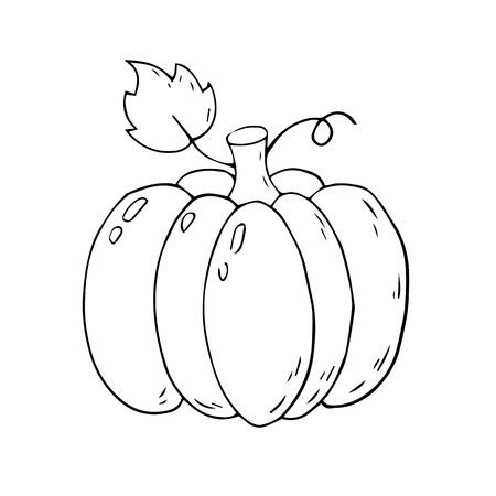 Cartoon pumpkin on a white background. Vector illustration.