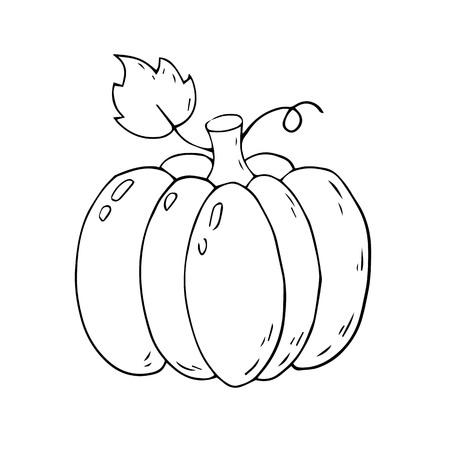 Citrouille de dessin animé sur fond blanc. Illustration vectorielle.
