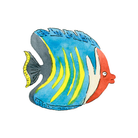 Tropical butterfly fish on white background. Hand drawn watercolor illustration. Stock Illustration - 121725219