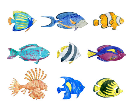 Set of cute tropical fishes on white background. Hand drawn watercolor illustration. Stok Fotoğraf