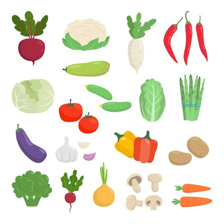 Set of cartoon colorful vegetables  on white background. Vector illustration.