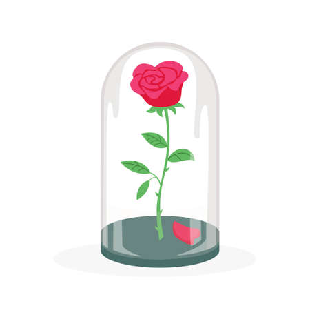 Rose in a flask of glass on the white background. Vector illustration. Ilustração