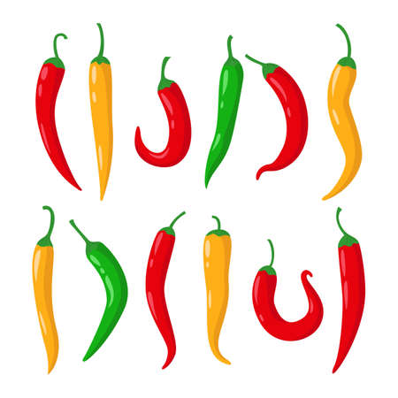 Vegetable icon set of chili pepper. Vector illustration.