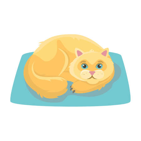 Ginger cat lies on a blue rug. Vector illustration.