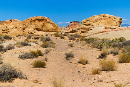nevada desert: Desert in Valley of Fire State Park, Nevada, USA Stock Photo