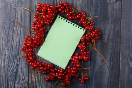 guelder rose: Notebook for recipes with a viburnum on a wooden table Stock Photo