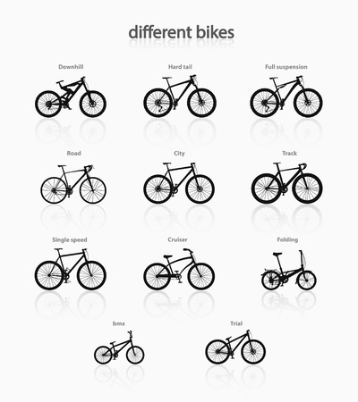 personal accessory: Various types of bicycles in a minimalist style. Illustration