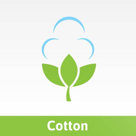 Picture of Cotton in a minimalist style. Illustration