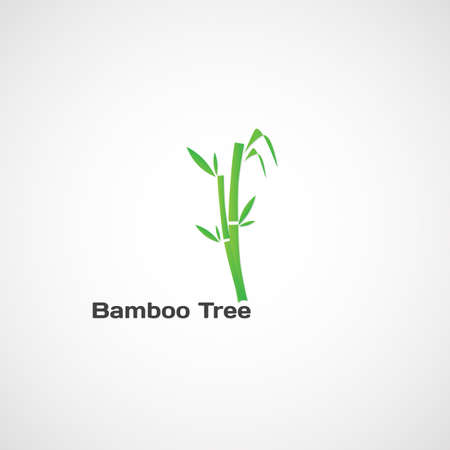 bamboo stick: Bamboo Tree. Bright picture of a tree with leaves of bamboo.