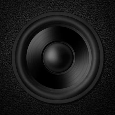 Black white speaker, leather speakers photo