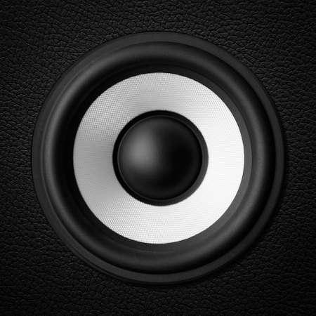oscillations: Black white speaker, leather speakers