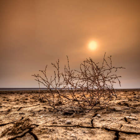 HDR Sunset on the dry lake, Manych Gudilo Stock Photo