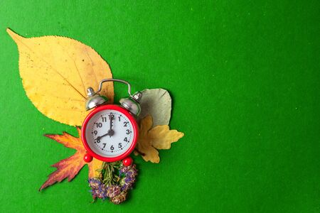 Back to school concept. Old alarm clock on the background of dry autumn leaves. Copy space. Reklamní fotografie