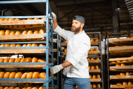 A baker carries a rack of bread at the bakery. Industrial bread production Banco de Imagens
