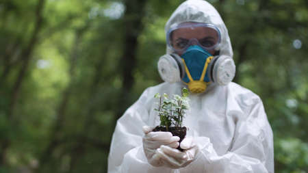 Anonymous person in protective suit holding pile of earth with small sprout in woods. Standard-Bild