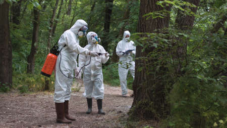 Three biochemists in woods discussing while treating trees with preservative.