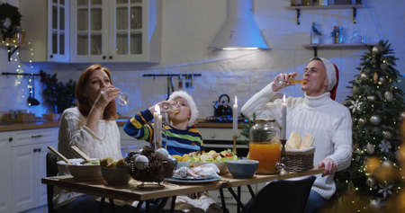 Shot of a family toasting with juice at Christmas