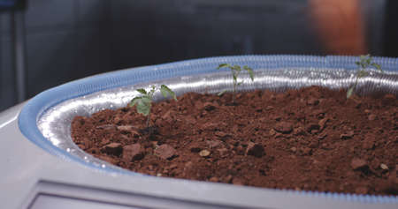 Close-up of a scientist planting seedlings on a Mars base