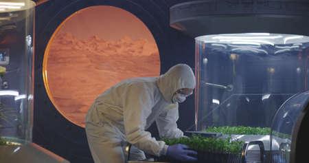 Medium shot of scientists in hazmat suits checking plant incubators on a Mars base Banco de Imagens