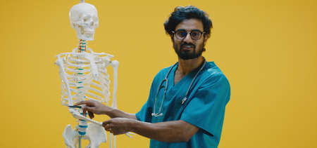 Medium shot of young doctor explaining human anatomy with skeleton Banco de Imagens - 137938486