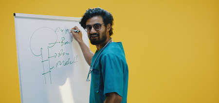 Medium shot of young doctor drawing tree on flipchart Banco de Imagens - 137938487