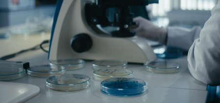 Medium shot of researcher working with samples using microscope in virus laboratory