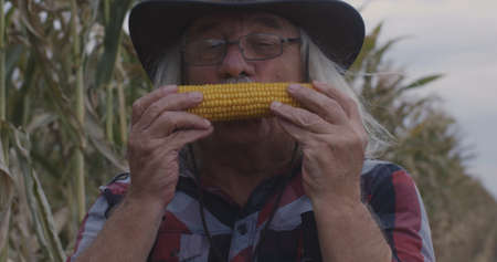 Delighted elderly man kissing ripe corn then looking at camera with smile while working in agricultural field