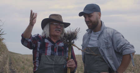 Grandfather and grandson having argument about harvest while standing in agricultural field in countryside together