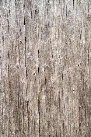 Wood texture with natural old pine. Standard-Bild