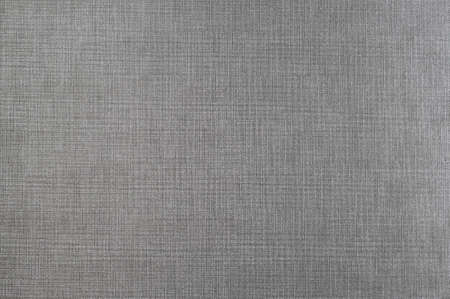 Simple texture of gray fabric. Standard-Bild
