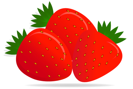 Vector illustration. Realistic, bright, juicy, fresh berries Strawberry, with highlights and shadows on a white background. May be used for signage: of shops, markets, logo, banners, etc Ilustrace