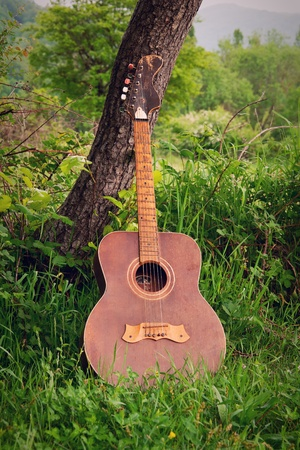 guitar music standing outdoors in nature, about the tree photo