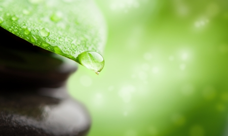 natural medicine: green abstract background  spa with leaf and water drop