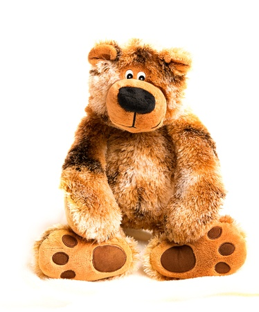 toy bear: A soft toy teddy bear brown on white background
