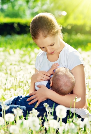 small breast: breastfeeding. mother feeding her baby in nature green meadow with white flowers Stock Photo