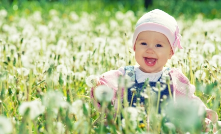 Beautiful happy little baby girl sitting on a green meadow with white flowers dandelions on the nature in the park photo