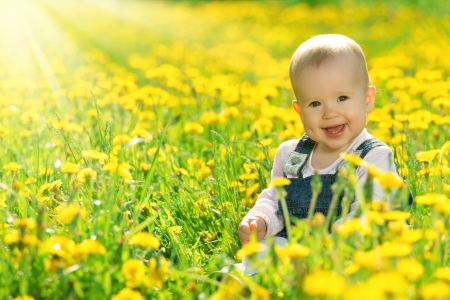 laughing baby: Beautiful happy little baby girl sitting on a green meadow with yellow flowers dandelions on the nature in the park