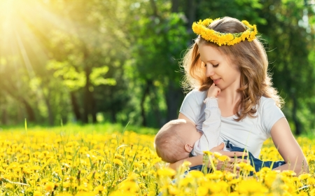 breastfeeding. mother feeding her baby in nature green meadow with yellow flowers