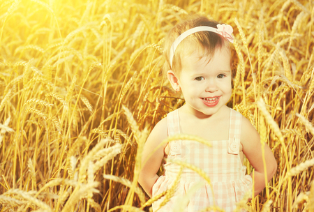 happy little girl in a field of golden wheat in the summer photo