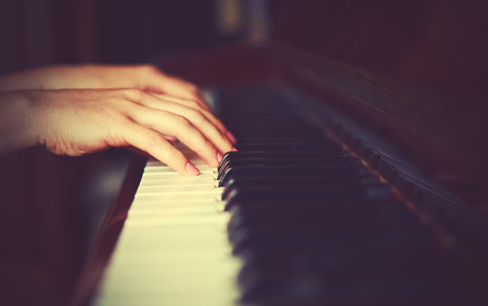 piano player: hands of a young woman pianist on the piano keyboard