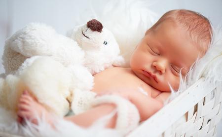 lean on hands: Cute newborn baby sleeps with a toy teddy bear white