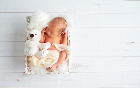 かわいい新生児眠るバスケット グッズ テディベア