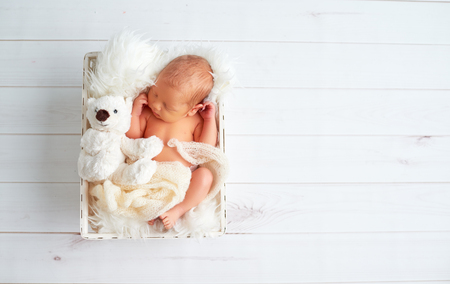 Cute newborn baby sleeps with a toy teddy bear in the basket Stok Fotoğraf