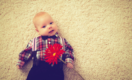 young boy smiling: happy baby boy gentleman with a flower Gerbera