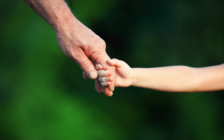adult hand: concept of family. Hand the childs in hand  father and grandfather