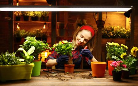 Happy woman gardener transplants and watering flowers in greenhouse