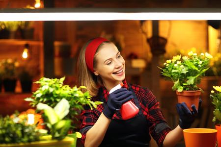 transplants: Happy woman gardener transplants and watering flowers in greenhouse