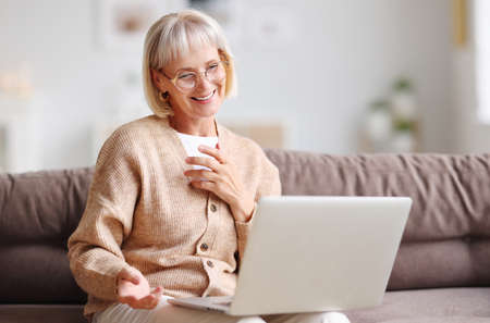 Positive middle aged female with gray hair sitting on couch at home and talking on video chat via netbook while gesticulating and smiling Zdjęcie Seryjne